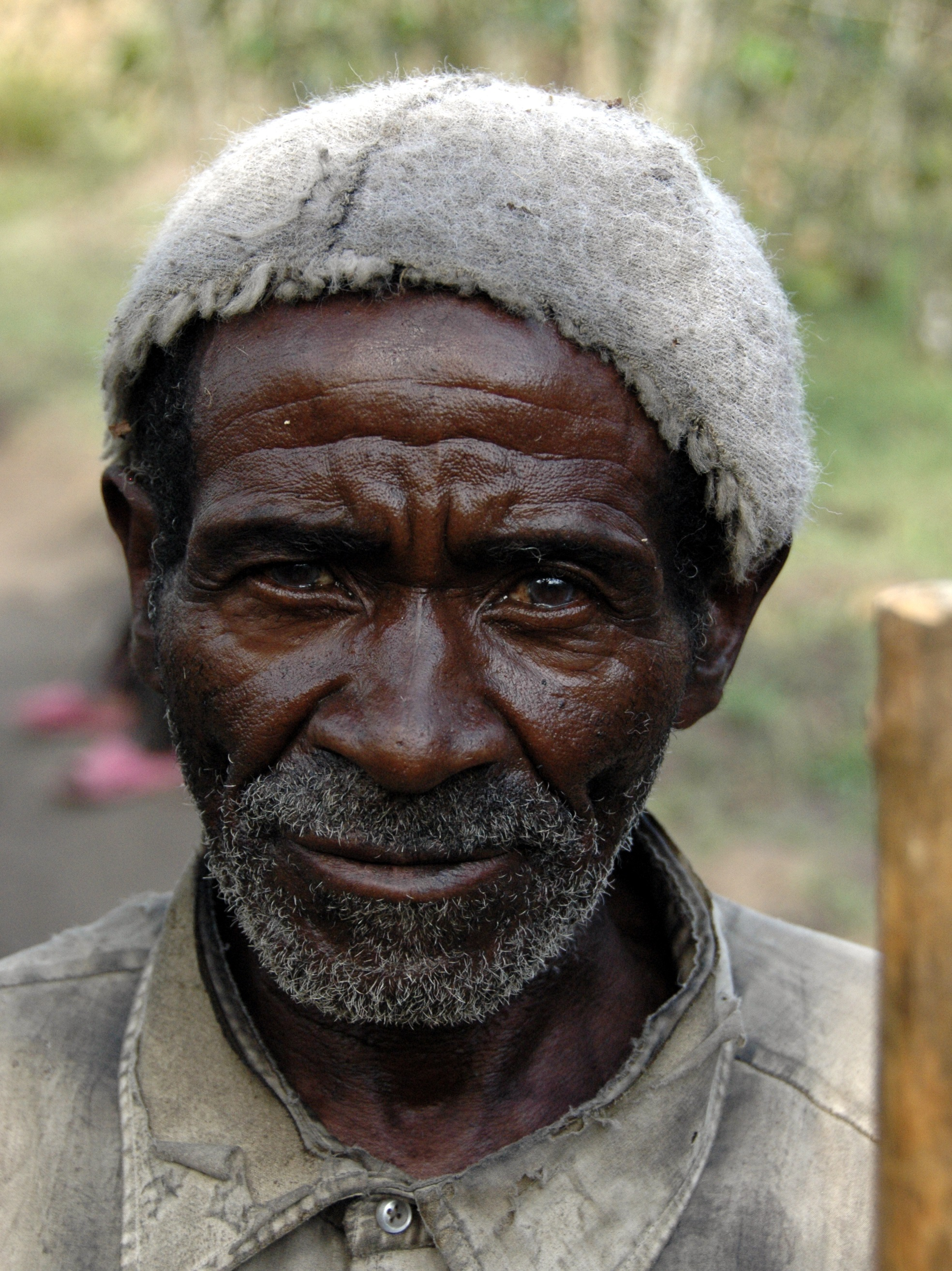 Congo, 2006