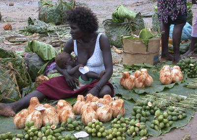 Bougainville, 2003